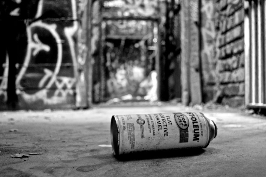 The+cages+of+the+Abandoned+LA+Zoo+have+turned+into+the+canvas+for+street+artists%2C+adding+life+to+what+is+now+decaying.+Residents+of+the+Los+Angeles+area+%28and+most+of+southern+California%29+visit+the+old+zoo+to+explore+the+ruins+of+what+is+left.+The+zoo+was+closed+in+1966+but+it+has+since+been+opened+to+the+public.