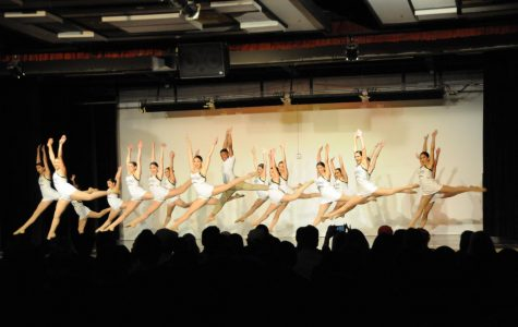 Winter Dance Show Presents Dancers' True Colors