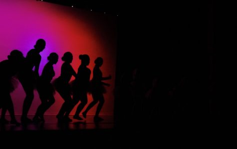 Stunning solo performances steal the show at the 2017 Winter Dance Show
