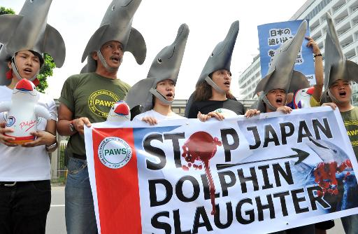 Activists wear dolphin hats to protest the annual slaughter of dolphins in Taiji, Japan, in front of a Japanese embassy. Photo from Public Domain.