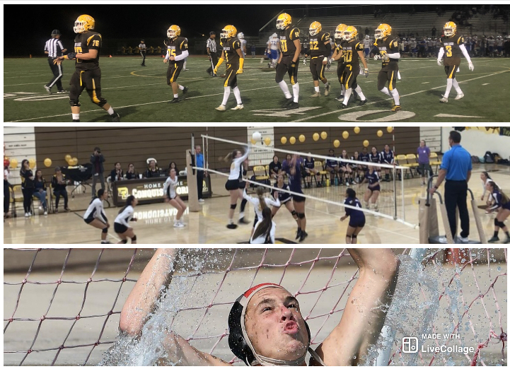 3+Fall+sports+teams+including%3A+Boys+football%2C+Girls%27+volleyball%2C+and+Boys%27+water+polo+advance+to+CIF+playoffs+for+4+years+in+a+row.++