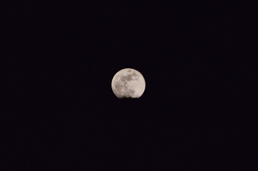 First+supermoon+of+2020