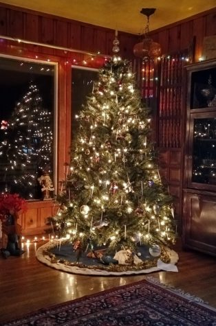 Christmas tree purchased from Home-Deport to celebrate the holidays. Photo courtesy of Megan Robinson.