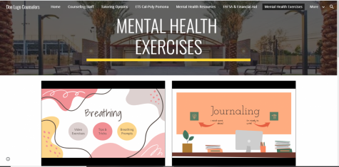 The Don Lugo counselor website with videos that offer students mental health exercises and different ways to relieve their stress.